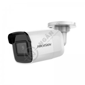 Camera IP Wifi 2M DS-2CD2021G1-IW