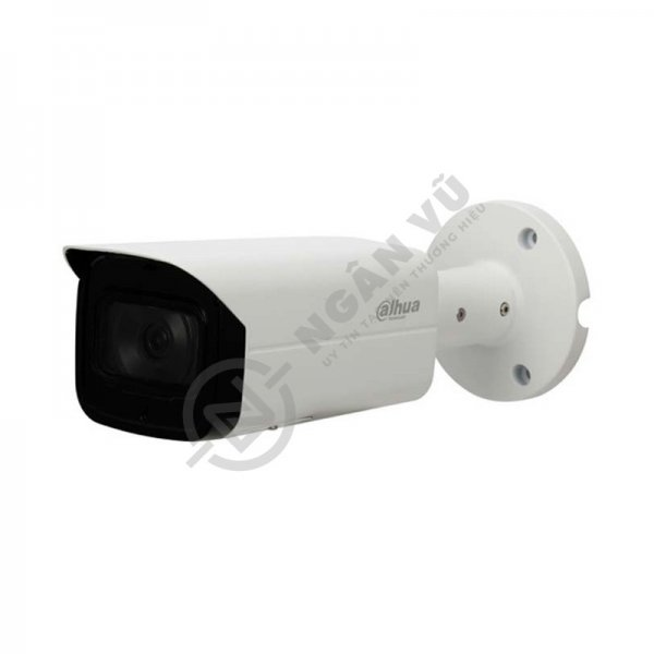 Camera IP 2MP Dahua IPC-HFW4231TP-S-S4